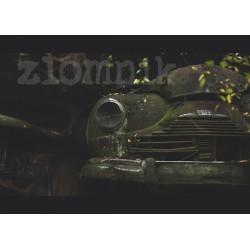 Plakat 50 x 70 cm z autografem – wzór 06