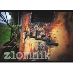 Plakat 50 x 70 cm z autografem – wzór 24